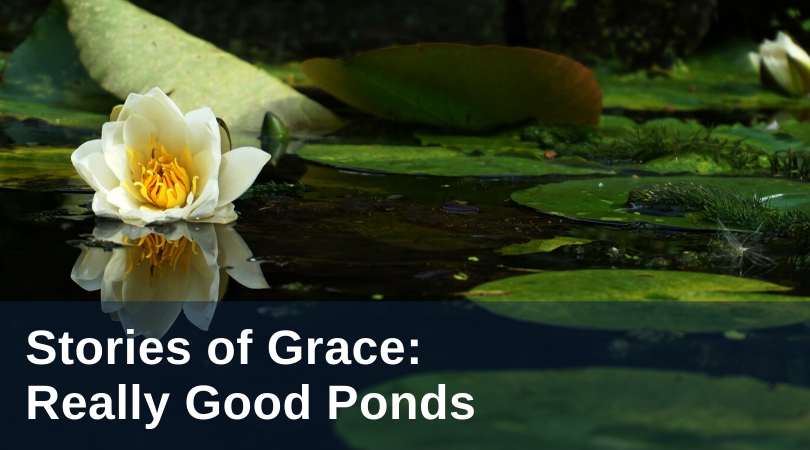 Infantine Stories of Grace-Ponds title
