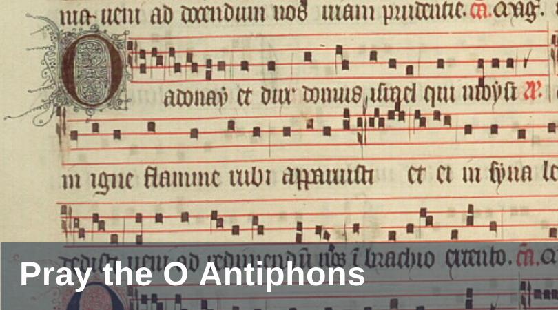 Pirtle O Antiphons title